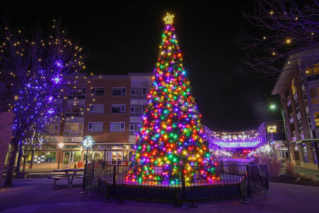 Christmas tree with lights in Stapleton, Denver
